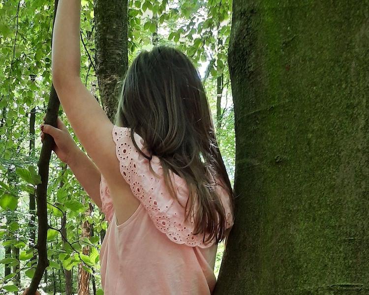 Kind im Baum, Wald, Ferien