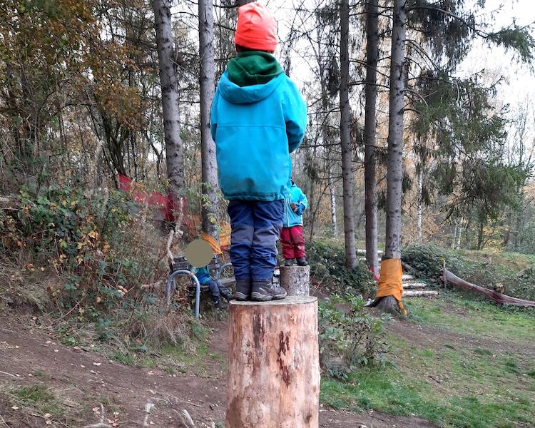 Kind steht auf Baumstumpf, Waldausflug