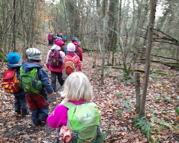 Waldspaziergang, Ausflug, Haltepunkt, Waldtag
