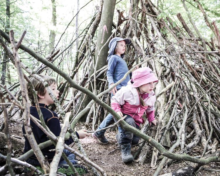 Wald entdecken, Stöckerhütte, Wochenplan