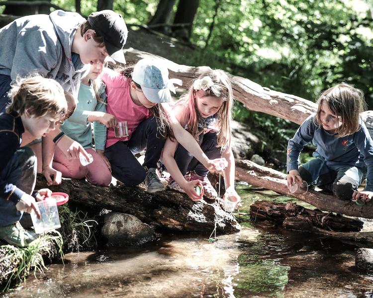 Freunde, Kinder am Fluss, Konzept