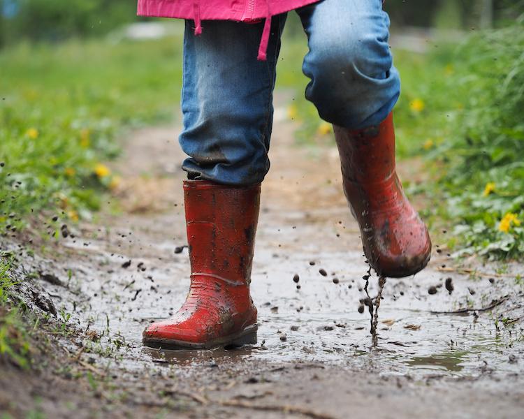 Konzept, Regen, wetterfest