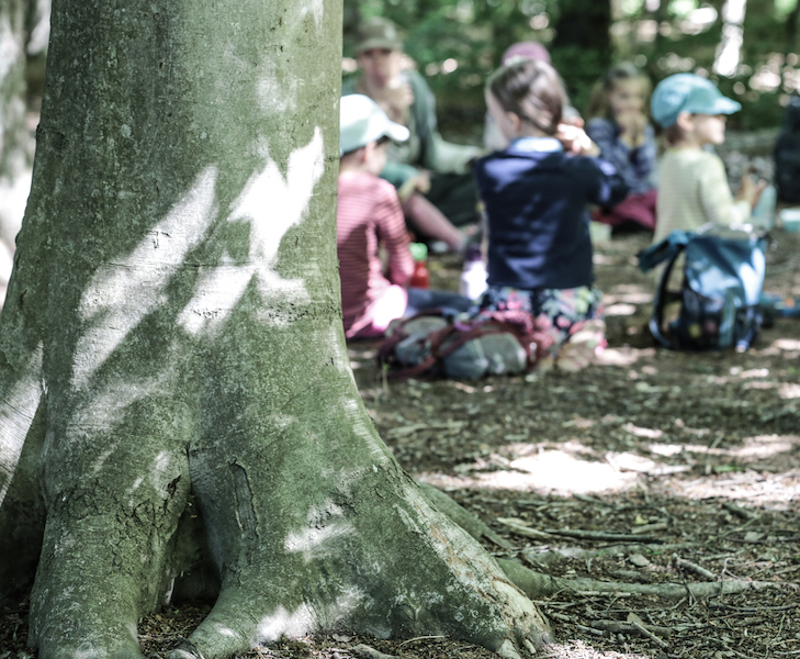 Konzept, Kinder im Wald,