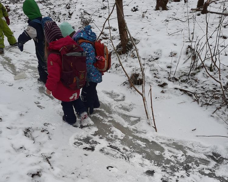 auf Eis schlittern, Wald, Schnee