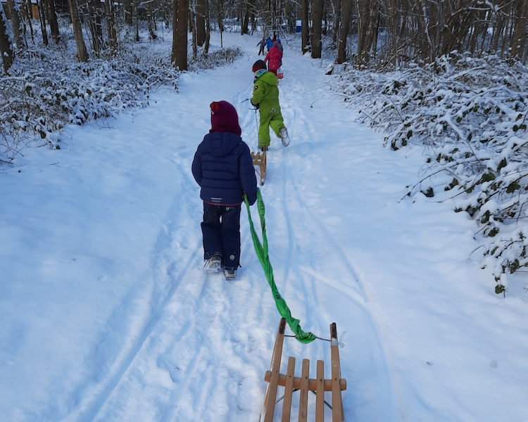 auf zum Rodeln, Schlitten, Schnee