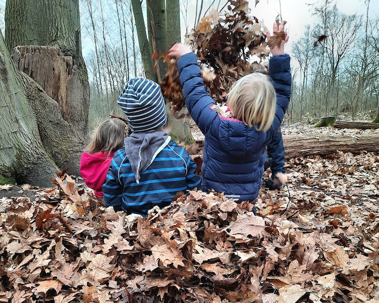 Blätterhaufen, in Blätter springen